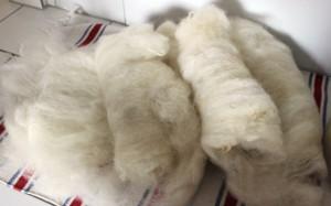 neue Wolle von ausser Gegend